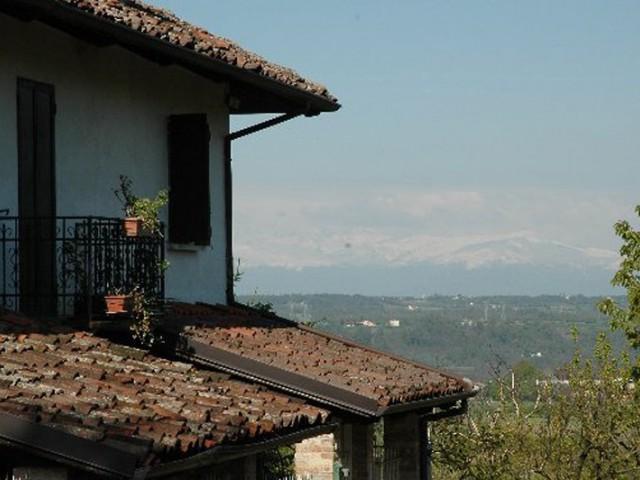 Karakteristieke Gewelfde Plafonds : Karakteristieke boerderij met eigen wijngaard met dolcetto druiven